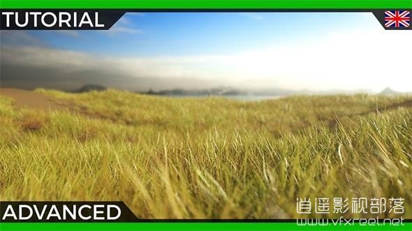 Cinema-4D-Tutorial-Octane-and-Forester-Advanced-Grass-Shading C4D教程:Octane渲染器草丛材质制作教程 Octane and Forester Advanced Grass Shading