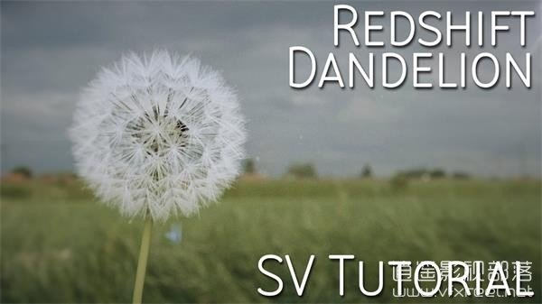 C4D教程:使用毛发和Redshift渲染器制作蒲公英教程 Dandelion Tutorial
