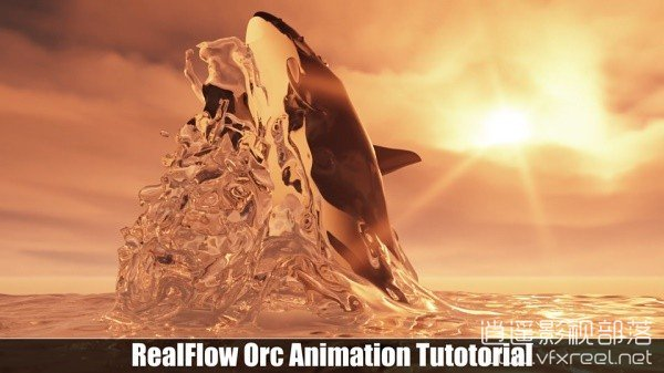 RealFlow-Orca-animation-Tutorial C4D教程:RealFlow制作鲸鱼跳出水面流体动画特效教程 Skillshare RealFlow Orca Animation Tutorial